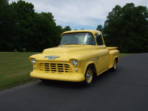 Tweety interior 1955 Chevrolet Pickups CUSTOM for sale