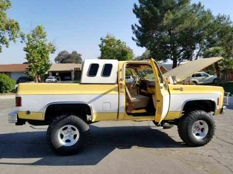 vintage lifted 1979 Chevrolet C 10 C/K 1500 Pickup custom for sale